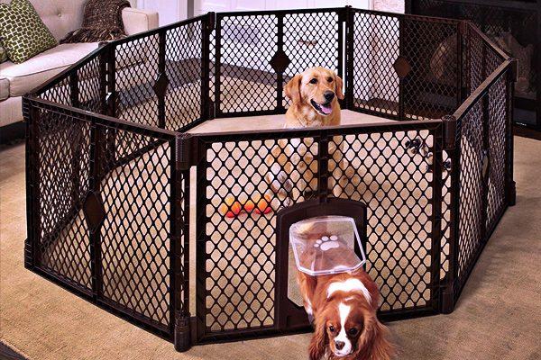 best puppy playpen